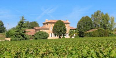 Domaine et vignes au Château d'Arvouet, producteur de Vin